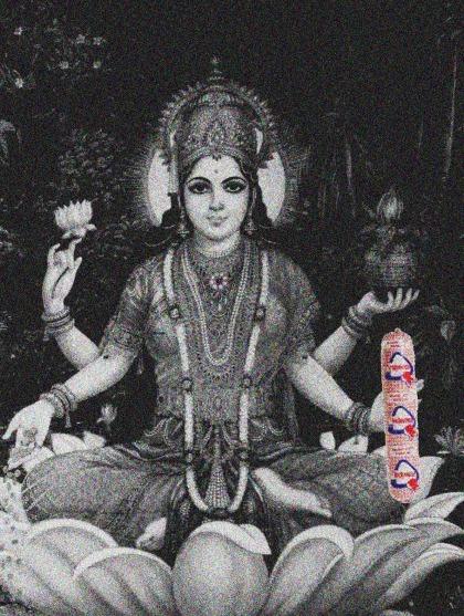 hinduveca